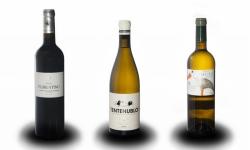 スペインワイン 3本セット